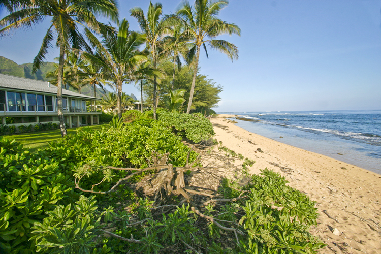 Kauai Vacation Rental: King Hale