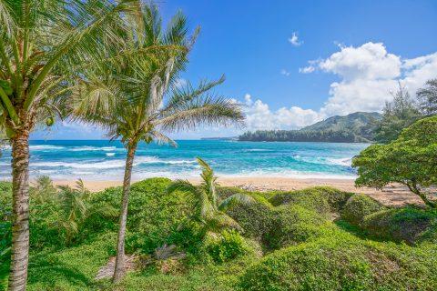 Kauai Covid-19 Update
