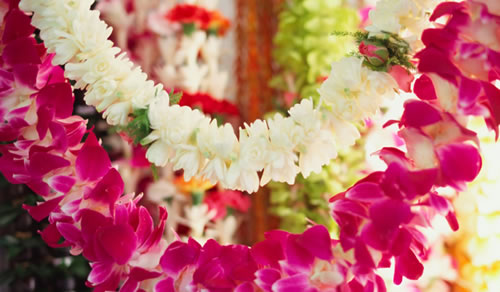 Lei: The Beauty & Tradition of Aloha