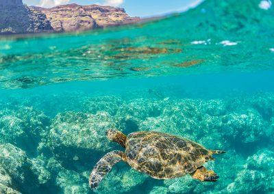 Snorkeling NaPali Coast, Kauai